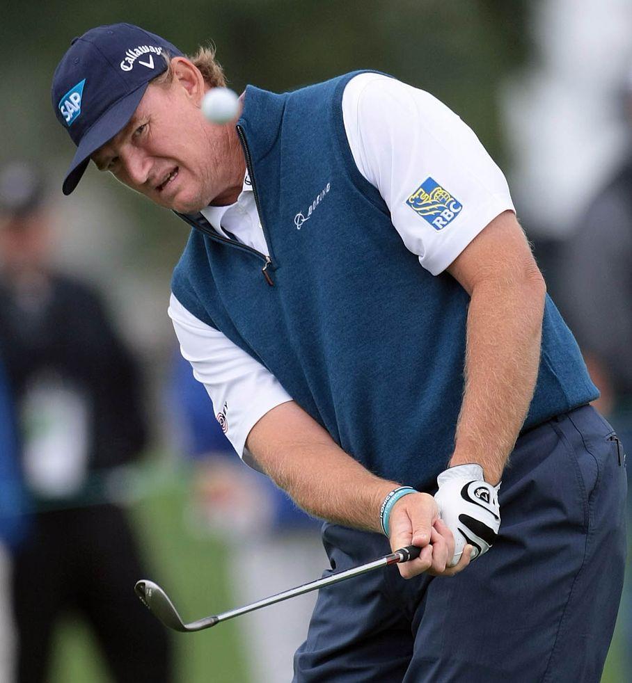 Professional Golfer: Ernie Els