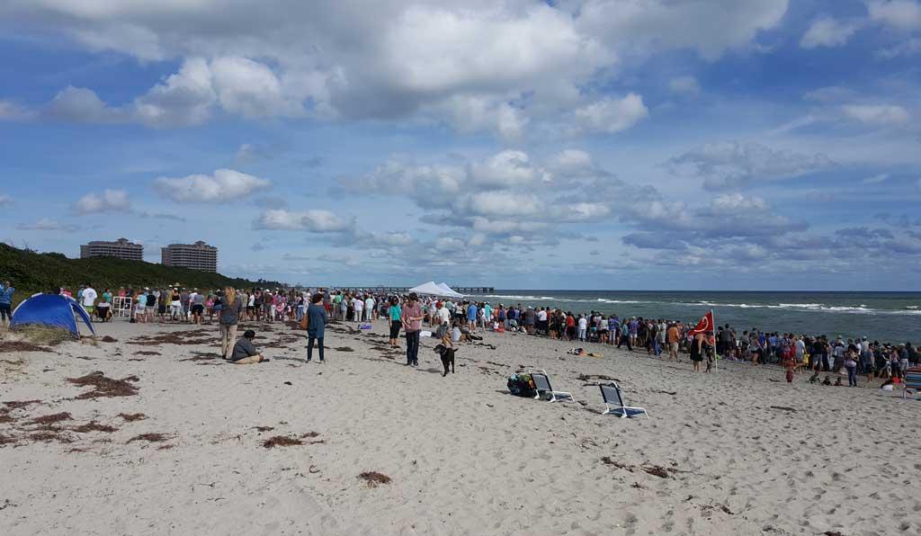 Loggerhead Marine Life Center Crowd to watch Turtle Release