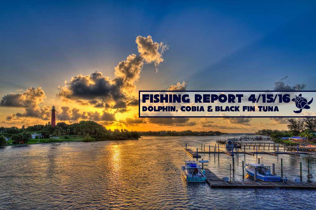 Southeast florida fishing report for Fishing jupiter fl