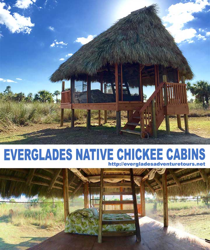 Everglades Adventure Tours
