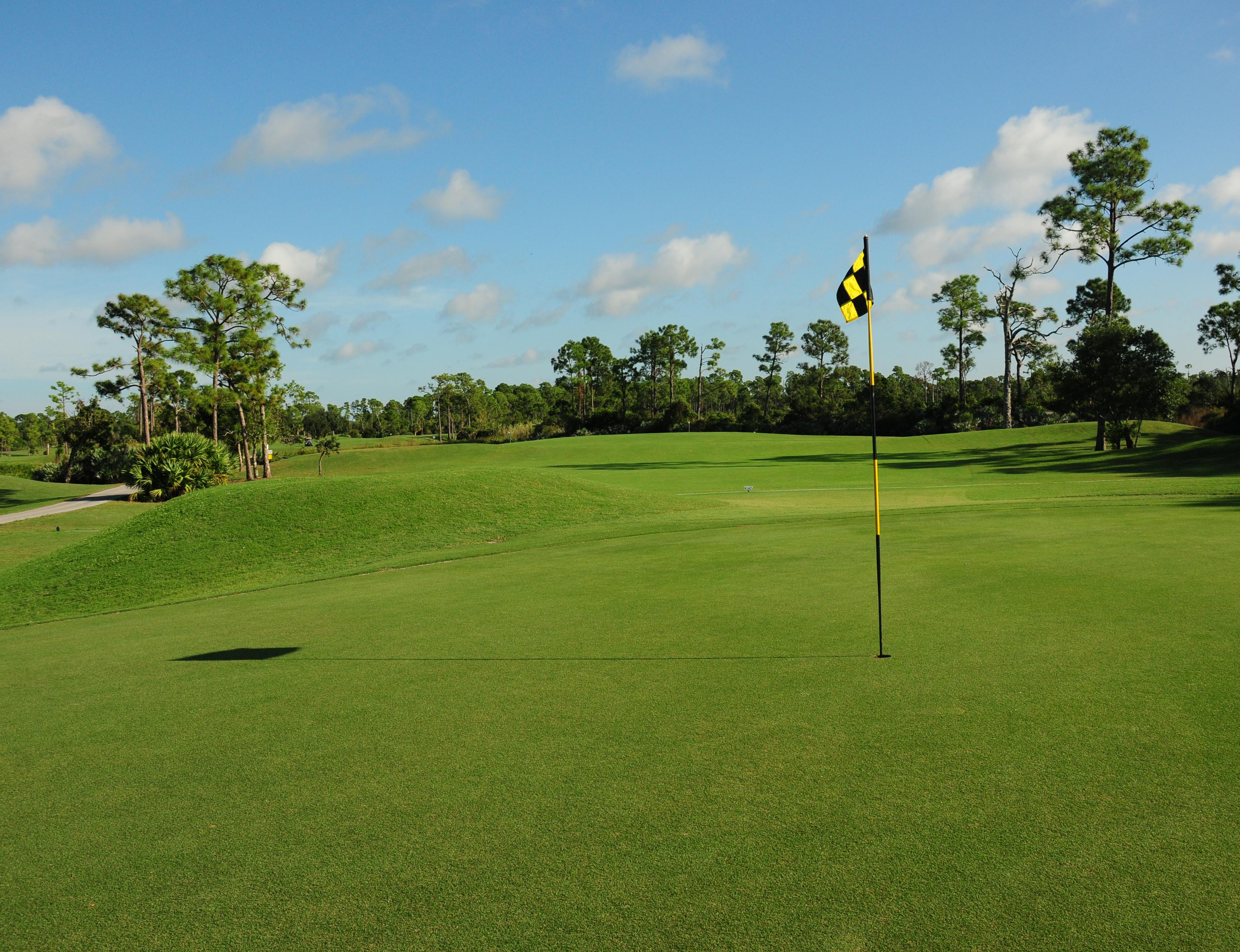 golf12_3710