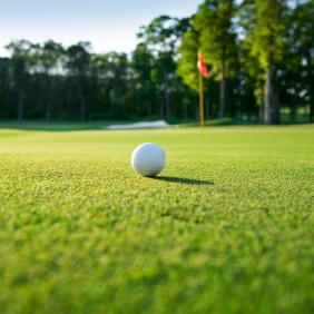 golf2-1_282_03