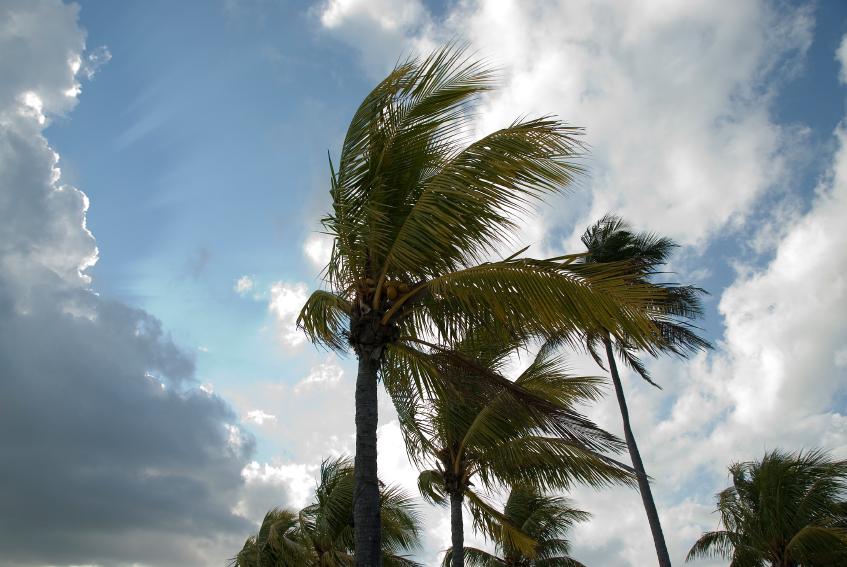 Hurricane Season Preparedness 2014