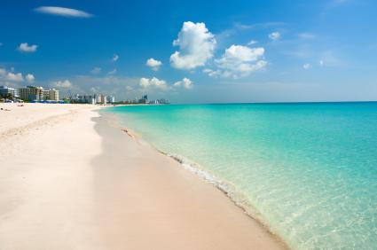 Businesses For Sale Miami Beach Florida
