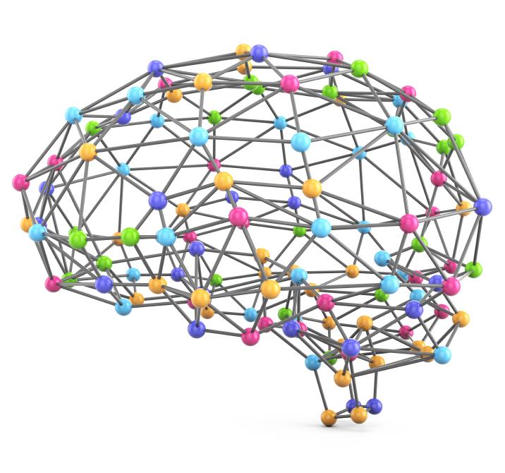 Max Planck's Brain Bee
