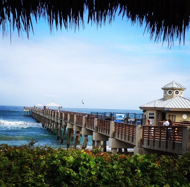 Things to do in Juno Beach
