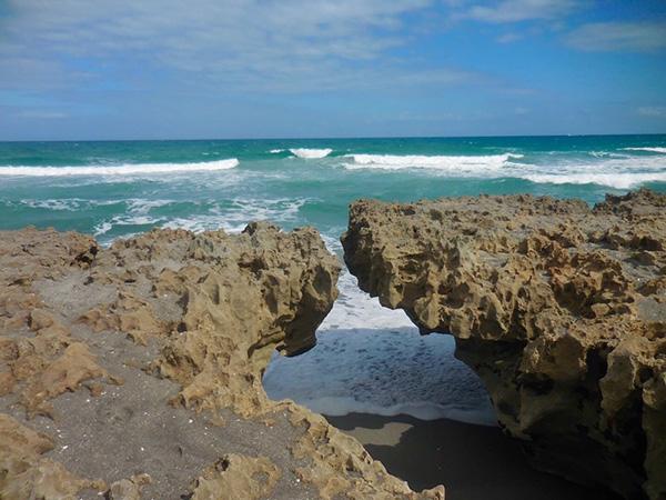 Ing Rocks Preserve In Hobe Sound