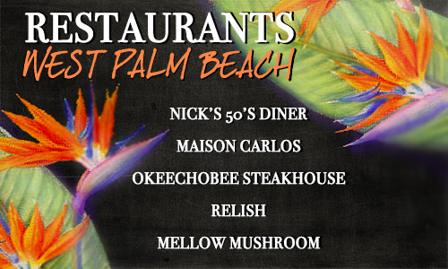 5 Things To Do in West Palm Beach