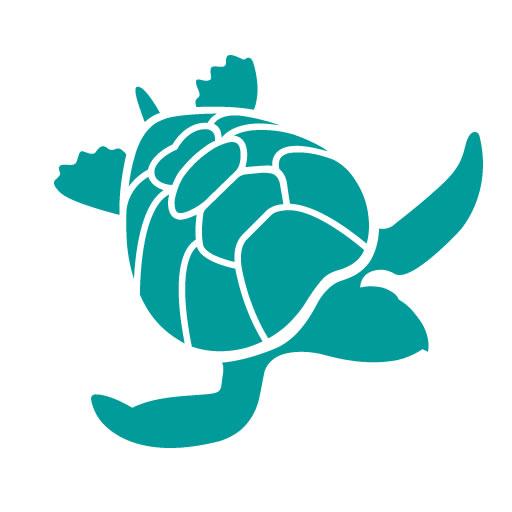 wf_turtle__512