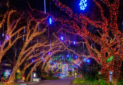 best holiday light displays in palm beach county